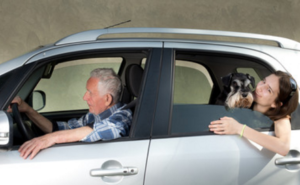 Lyft's New Service Animal Policy